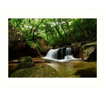 Forest Waterfall - Songnisan, South Korea Art Print