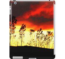 Midwestern Sundown iPad Case/Skin