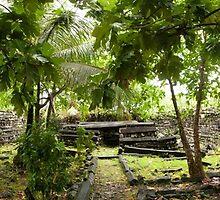Nan Douwas Central Tomb - Pohnpei, Micronesia by Alex Zuccarelli