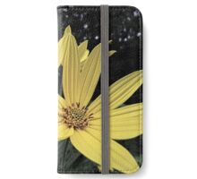 Helianthus Macro iPhone Wallet/Case/Skin