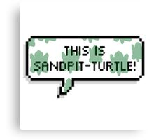 This is sandpit-turtle! Canvas Print
