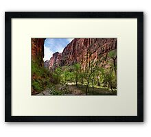 Zion Valley Framed Print