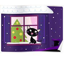 Cat looking through window, christmas tree and xmas snowy night Poster