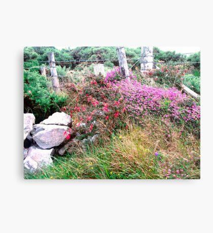Roadside  Flowers, Donegal, Ireland Metal Print