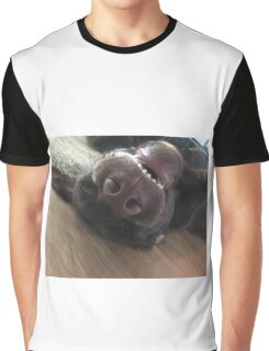 Chocolate Labrador Puppy Graphic T-Shirt