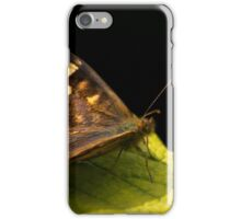 Butterfly On Leaf iPhone Case/Skin