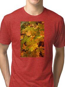 Fall Leaves Tri-blend T-Shirt