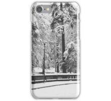 January Snow iPhone Case/Skin