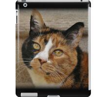 Pet Me Please iPad Case/Skin