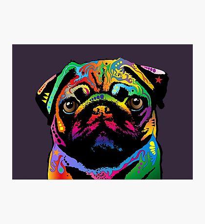 Pug Dog Photographic Print