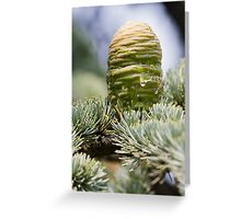 tree in the forest Greeting Card