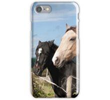 beautiful pair of Irish horses iPhone Case/Skin
