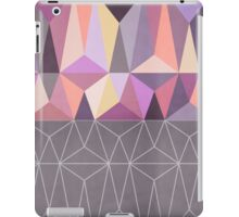 Nordic Combination 31 Z iPad Case/Skin