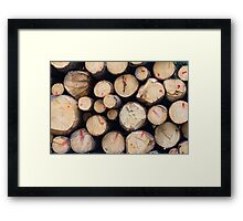 tree trunk Framed Print