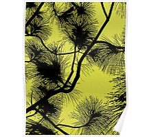Desert flora, abstract pattern, floral design, black and yellow Poster