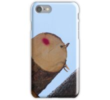 tree trunk iPhone Case/Skin