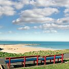 benches with views of Ballybunion beach by morrbyte