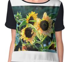 Sunflowers  Chiffon Top