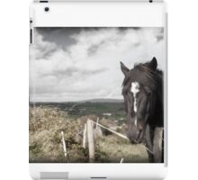 black Irish horse and ancient round tower iPad Case/Skin