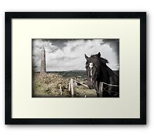 black Irish horse and ancient round tower Framed Print