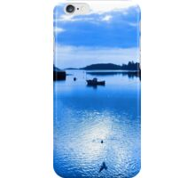 blue toned silhouette of boat and birds at sunset iPhone Case/Skin