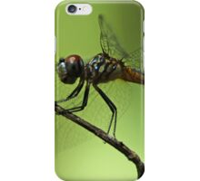dragon fly iPhone Case/Skin