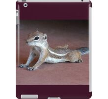 """Yoga Chipmunk"" iPad Case/Skin"