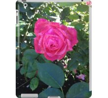 Camelot Rose iPad Case/Skin