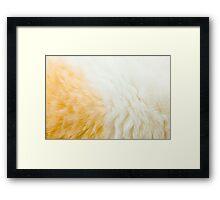 Ginger Cat Fur Framed Print