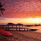 Palm Cove Dawn by Mel Brackstone