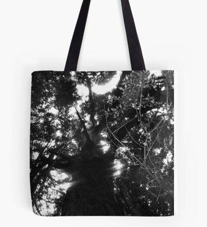 Cradle Mountain tree 1 Tote Bag