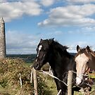 couple of Irish horses and ancient round tower by morrbyte