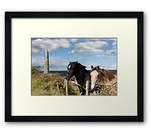 couple of Irish horses and ancient round tower Framed Print