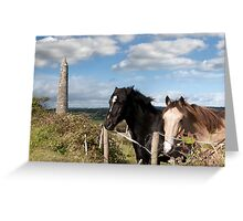 couple of Irish horses and ancient round tower Greeting Card