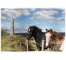 couple of Irish horses and ancient round tower Poster