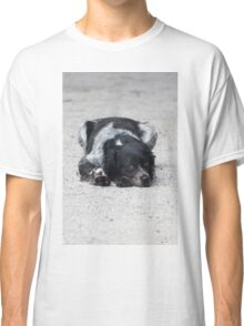 dog in the street Classic T-Shirt