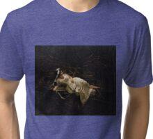 The Calm Tri-blend T-Shirt