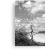 Errigal mountains and countryside in county Donegal Metal Print