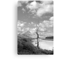 Errigal mountains and countryside in county Donegal Canvas Print