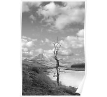 Errigal mountains and countryside in county Donegal Poster