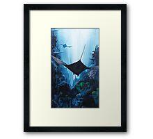 Flying Free Eagle Rays Framed Print