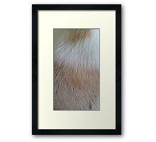 Sugars Fur Coat Framed Print