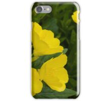 flower in the garden iPhone Case/Skin