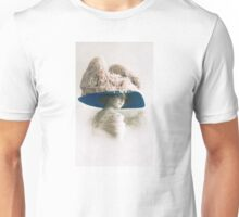 Edwardian lady in large picture hat Unisex T-Shirt