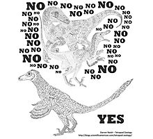 Just say NO to unfeathered non-avialan maniraptoran theropod dinosaurs Photographic Print
