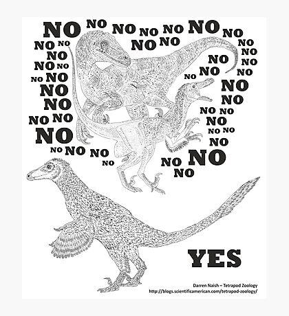 Just say NO to unfeathered non-avialan maniraptoran theropod dinosaurs Photographic Print