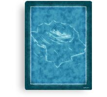 Pink Roses in Anzures 3 Outlined Blue Canvas Print