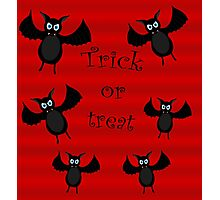 Trick or treat - bats Photographic Print