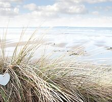 lone blue wooden heart on beach dunes by morrbyte