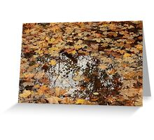 Fall, Finger Lakes, New York Greeting Card